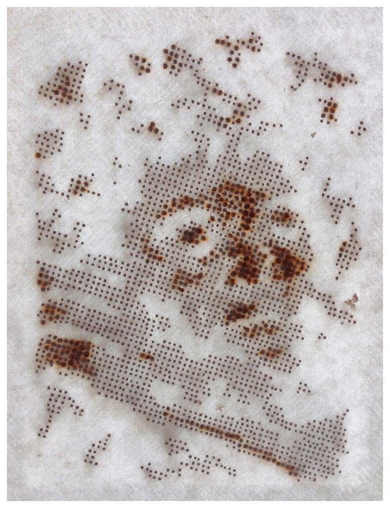 Mortecino No. 03 (alternate view) - archival pigment print - 24 x 31 in.