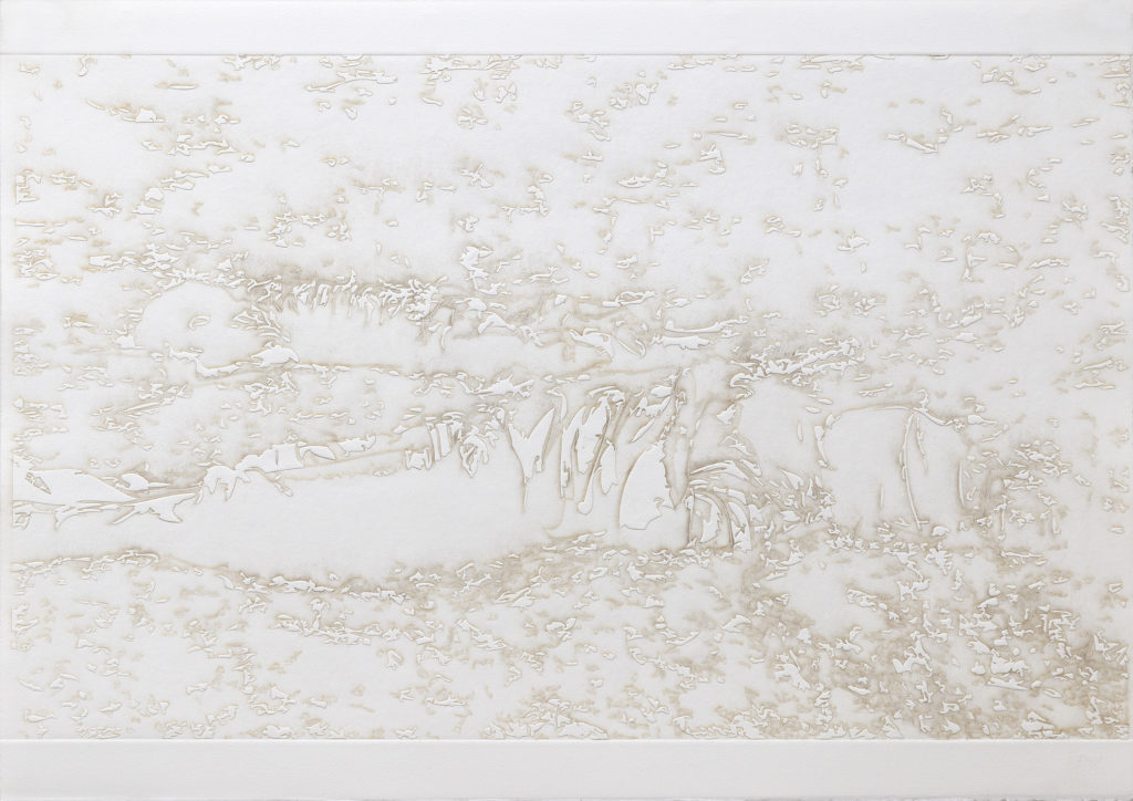 doble ejecucion - burnt residue embossing - 22 x 30 in.